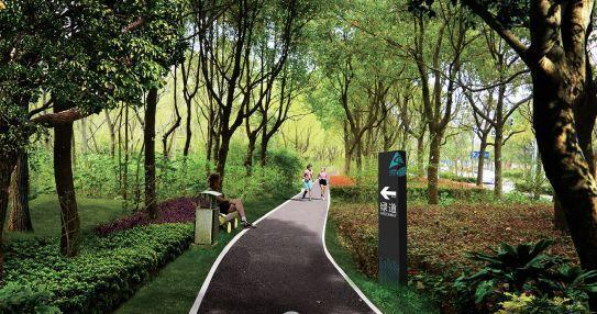 LDG景观︱杨浦区绿道建设工作