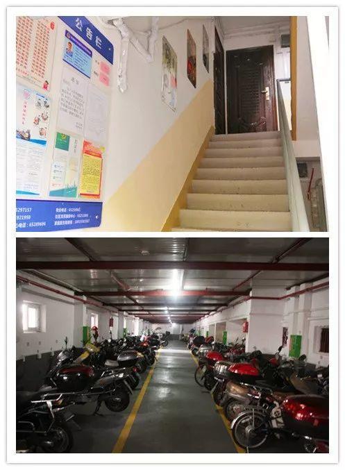 LDG动态︱改善人居环境·建设美丽家园
