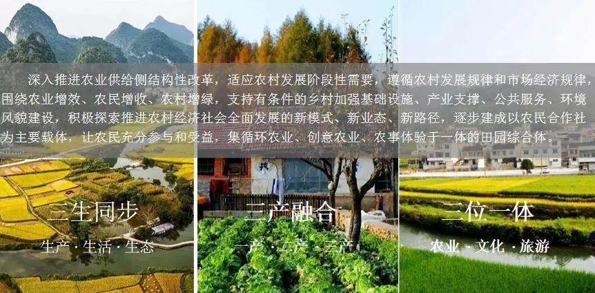 LDG动态︱近期中标田园综合体特色旅游策划及规划