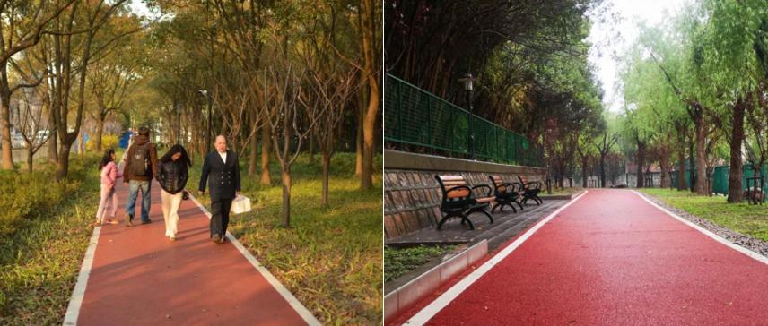 """LDG动态︱绿道""""环""""出健身道,绿肺呼出""""彩色泡"""",这些精心布局的""""绿网""""让市民共享美好"""