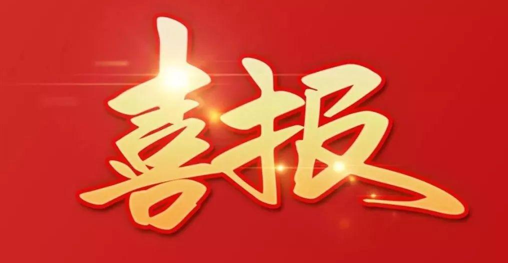 """LDG喜报 ︱上海经纬荣获""""2020年度市级设计引领示范企业""""称号"""