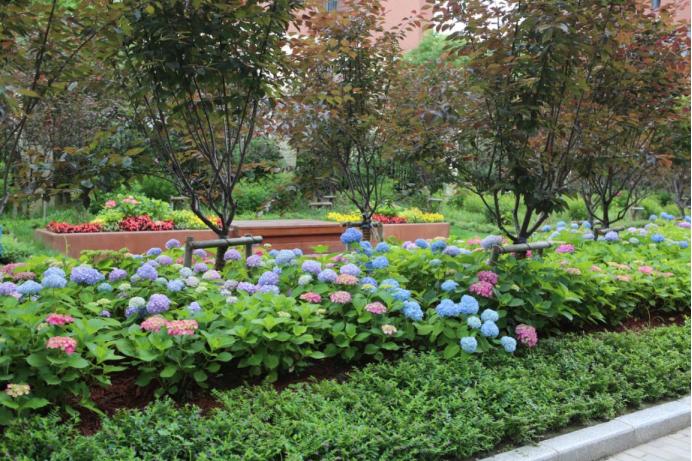 LDG景观︱绿色上海,经纬足迹